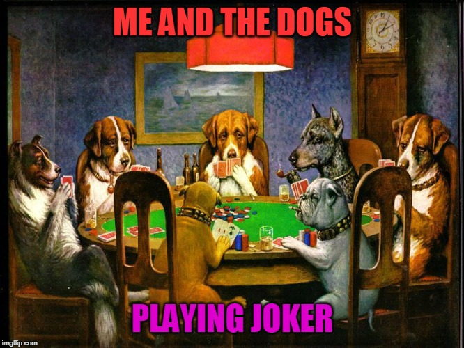 Me and the boys week - a Nixie.Knox and CravenMoordik event (Aug 19-25) | ME AND THE DOGS PLAYING JOKER | image tagged in nixieknox,cravenmoordik,me and the boys,me and the boys week,dog,joker | made w/ Imgflip meme maker