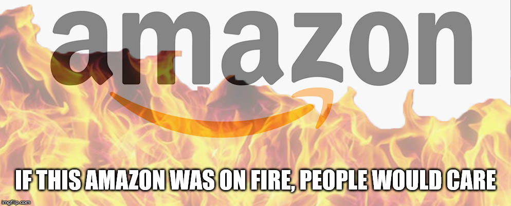 IF THIS AMAZON WAS ON FIRE, PEOPLE WOULD CARE | image tagged in amazon,rain,forest,forest fire,prime,fire | made w/ Imgflip meme maker