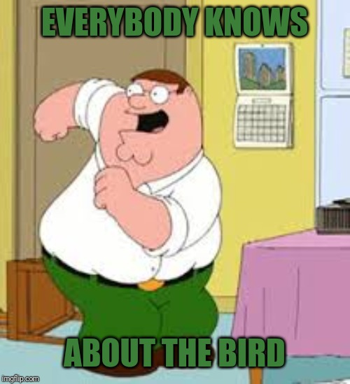 EVERYBODY KNOWS ABOUT THE BIRD | made w/ Imgflip meme maker