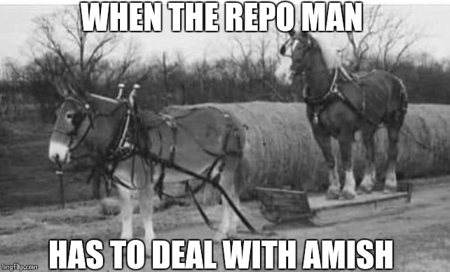 AMISH REPO MAN | WHEN THE REPO MAN HAS TO DEAL WITH AMISH | image tagged in amish,horses | made w/ Imgflip meme maker