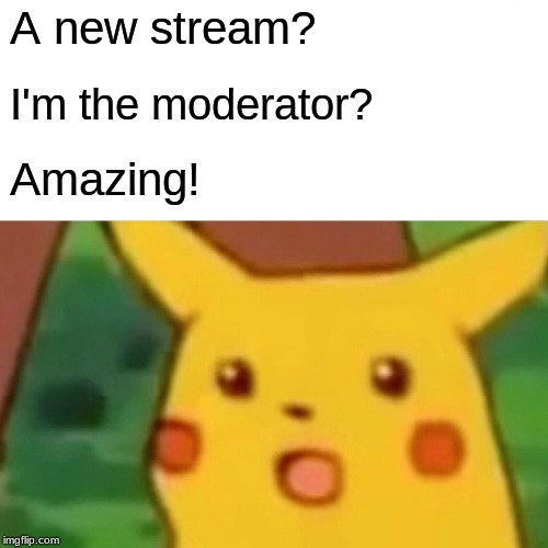 Surprised Pikachu |  A new stream? I'm the moderator? Amazing! | image tagged in memes,surprised pikachu | made w/ Imgflip meme maker