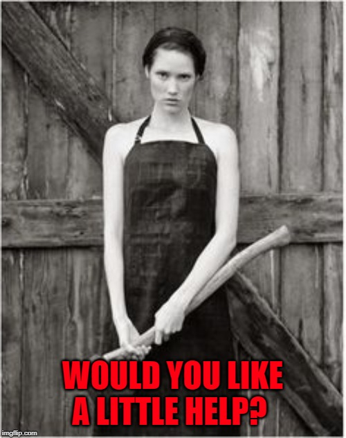 Crazy Woman | WOULD YOU LIKE A LITTLE HELP? | image tagged in crazy woman | made w/ Imgflip meme maker
