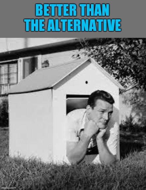 Doghouse | BETTER THAN THE ALTERNATIVE | image tagged in doghouse | made w/ Imgflip meme maker