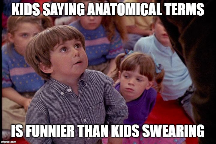 Anatomy Cop | KIDS SAYING ANATOMICAL TERMS IS FUNNIER THAN KIDS SWEARING | image tagged in kindergarten cop kid,anatomy,funny stuff,so true memes,swearing,lol | made w/ Imgflip meme maker