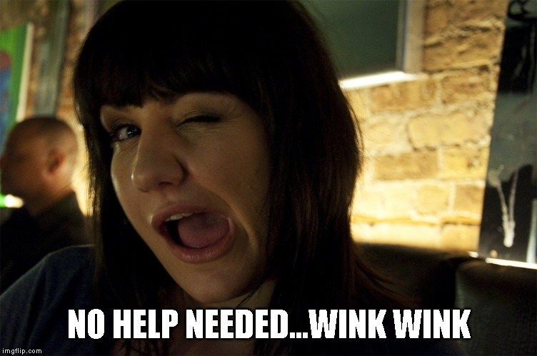 NO HELP NEEDED...WINK WINK | made w/ Imgflip meme maker