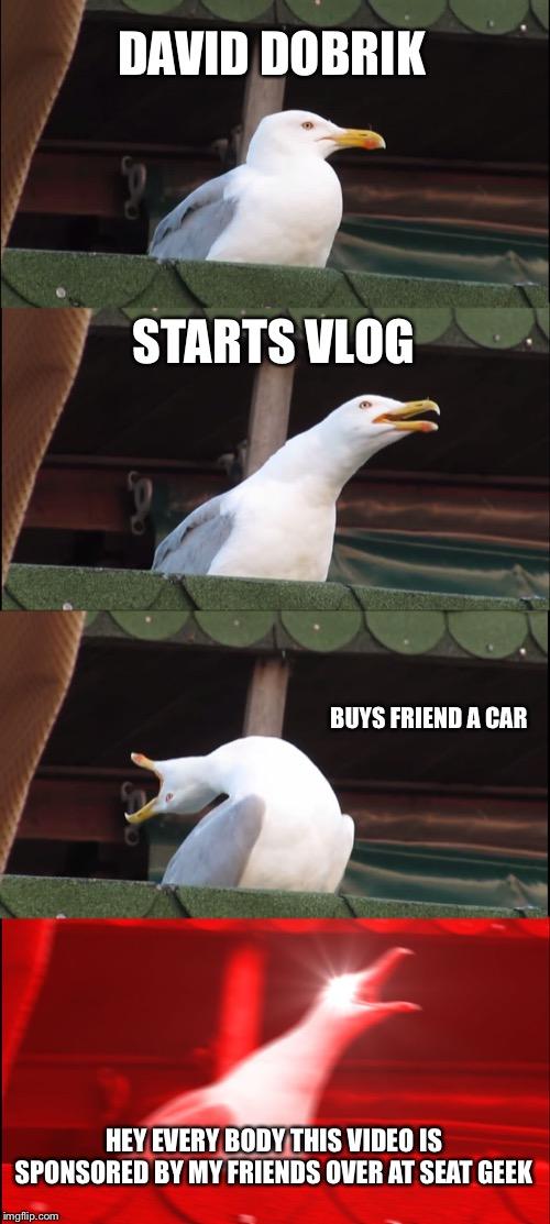 Inhaling Seagull Meme | DAVID DOBRIK STARTS VLOG BUYS FRIEND A CAR HEY EVERY BODY THIS VIDEO IS SPONSORED BY MY FRIENDS OVER AT SEAT GEEK | image tagged in memes,inhaling seagull | made w/ Imgflip meme maker