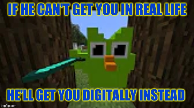 HE HAS A DIAMOND SWORD | IF HE CAN'T GET YOU IN REAL LIFE HE'LL GET YOU DIGITALLY INSTEAD | image tagged in duolingo,minecraft | made w/ Imgflip meme maker