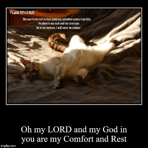 Oh my LORD and my God in you are my Comfort and Rest | image tagged in christian | made w/ Imgflip demotivational maker