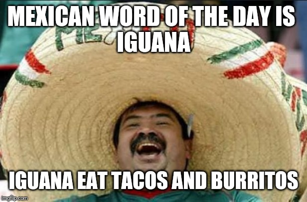 Mexican Lunch! | MEXICAN WORD OF THE DAY IS  IGUANA IGUANA EAT TACOS AND BURRITOS | image tagged in mexican word of the day,memes,puns,mexican,food,tacos | made w/ Imgflip meme maker