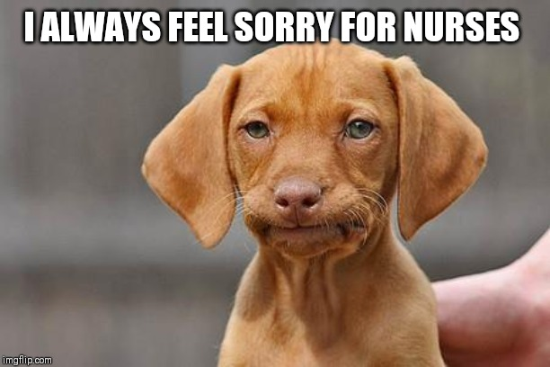 Dissapointed puppy | I ALWAYS FEEL SORRY FOR NURSES | image tagged in dissapointed puppy | made w/ Imgflip meme maker