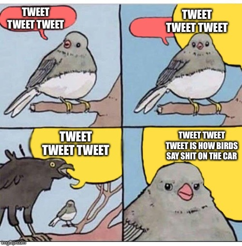 annoyed bird |  TWEET TWEET TWEET; TWEET TWEET TWEET; TWEET TWEET TWEET; TWEET TWEET TWEET IS HOW BIRDS SAY SHIT ON THE CAR | image tagged in annoyed bird,memes,funny,lost in translation | made w/ Imgflip meme maker