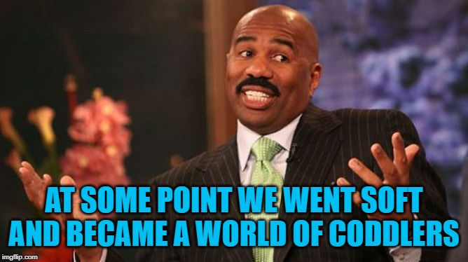 Steve Harvey Meme | AT SOME POINT WE WENT SOFT AND BECAME A WORLD OF CODDLERS | image tagged in memes,steve harvey | made w/ Imgflip meme maker