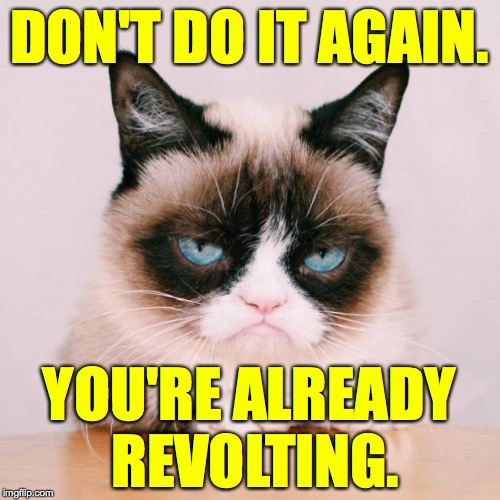 grumpy cat again | DON'T DO IT AGAIN. YOU'RE ALREADY  REVOLTING. | image tagged in grumpy cat again | made w/ Imgflip meme maker