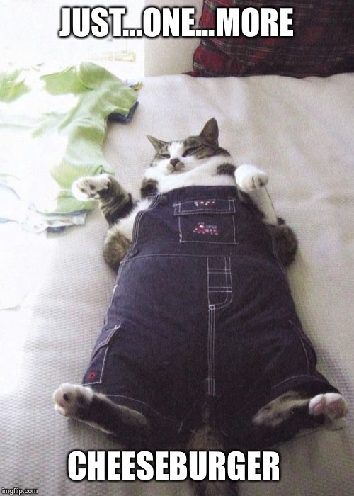 Fat Cat Meme | JUST...ONE...MORE CHEESEBURGER | image tagged in memes,fat cat | made w/ Imgflip meme maker