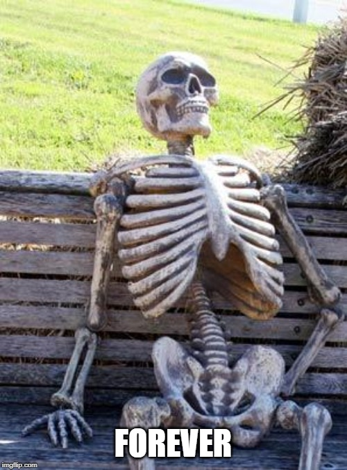 Waiting Skeleton Meme | FOREVER | image tagged in memes,waiting skeleton | made w/ Imgflip meme maker