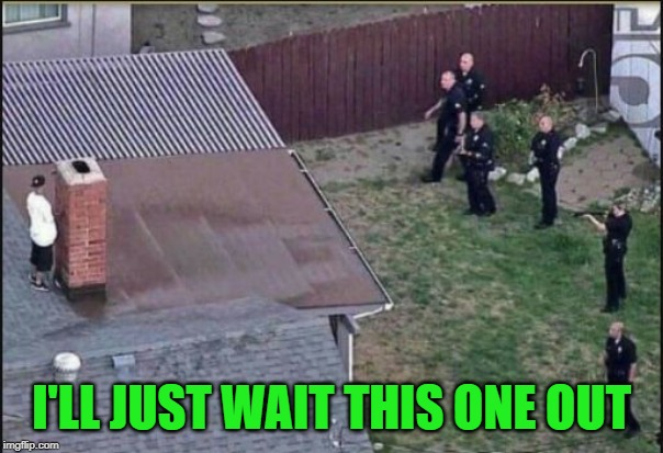 Hiding from police | I'LL JUST WAIT THIS ONE OUT | image tagged in hiding from police | made w/ Imgflip meme maker