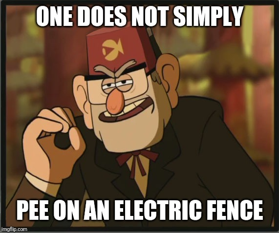 One Does Not Simply: Gravity Falls Version | ONE DOES NOT SIMPLY PEE ON AN ELECTRIC FENCE | image tagged in one does not simply gravity falls version | made w/ Imgflip meme maker