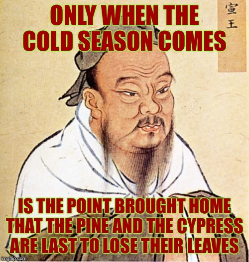 Confucius Says | ONLY WHEN THE COLD SEASON COMES IS THE POINT BROUGHT HOME THAT THE PINE AND THE CYPRESS ARE LAST TO LOSE THEIR LEAVES | image tagged in confucius says | made w/ Imgflip meme maker