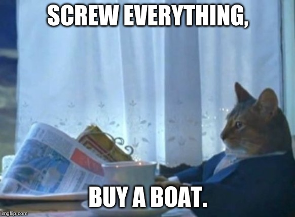 buy a boat |  SCREW EVERYTHING, BUY A BOAT. | image tagged in memes,i should buy a boat cat,buy a boat,screw everything | made w/ Imgflip meme maker