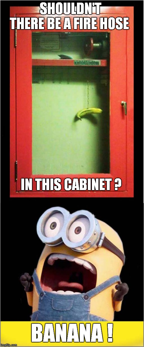 Emergency  Banana ! | SHOULDN'T THERE BE A FIRE HOSE BANANA ! IN THIS CABINET ? | image tagged in fun,minions,banana | made w/ Imgflip meme maker