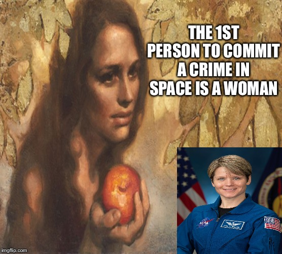 THE 1ST PERSON TO COMMIT A CRIME IN SPACE IS A WOMAN | image tagged in space | made w/ Imgflip meme maker
