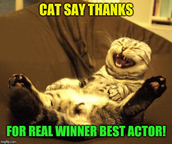 laughing cat | CAT SAY THANKS FOR REAL WINNER BEST ACTOR! | image tagged in laughing cat | made w/ Imgflip meme maker
