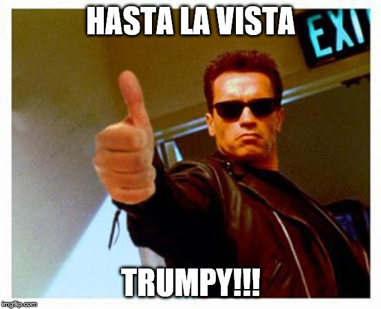 terminator thumbs up | HASTA LA VISTA TRUMPY!!! | image tagged in terminator thumbs up | made w/ Imgflip meme maker