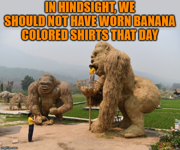 Also the banana cologne was a not smart either |  IN HINDSIGHT, WE SHOULD NOT HAVE WORN BANANA COLORED SHIRTS THAT DAY | image tagged in gorilla,king kong,banana,funny meme | made w/ Imgflip meme maker