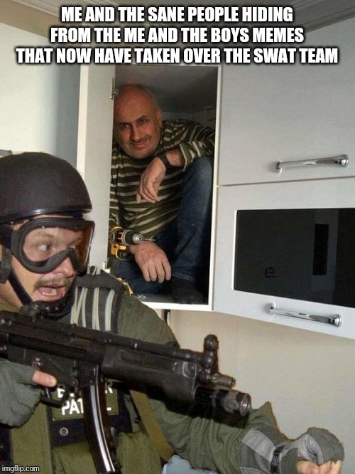 Man hiding in cubboard from SWAT template | ME AND THE SANE PEOPLE HIDING FROM THE ME AND THE BOYS MEMES THAT NOW HAVE TAKEN OVER THE SWAT TEAM | image tagged in man hiding in cubboard from swat template | made w/ Imgflip meme maker