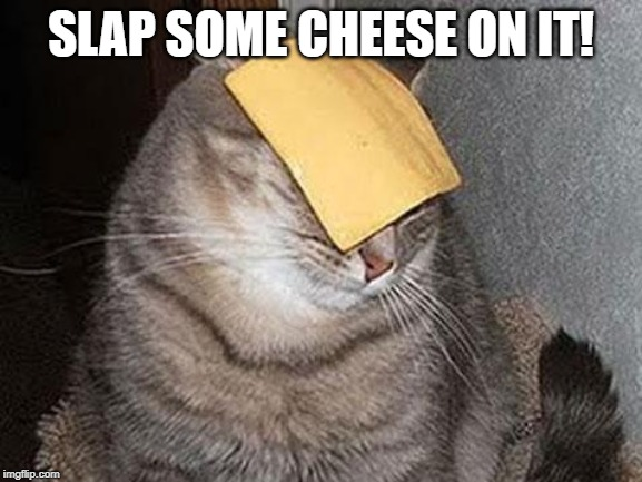 Cats with cheese | SLAP SOME CHEESE ON IT! | image tagged in cats with cheese | made w/ Imgflip meme maker