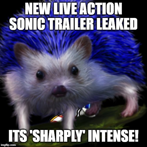NEW LIVE ACTION SONIC TRAILER LEAKED ITS 'SHARPLY' INTENSE! | image tagged in sonic,hedgehog | made w/ Imgflip meme maker