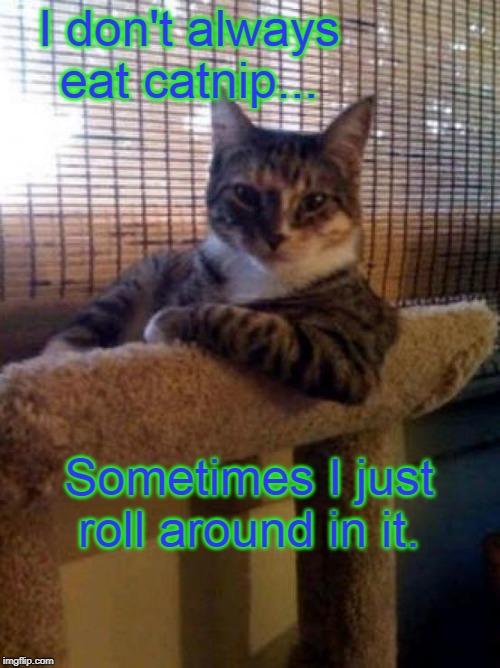 Such a sophisticat. | I don't always eat catnip... Sometimes I just roll around in it. | image tagged in memes,the most interesting cat in the world,catnip | made w/ Imgflip meme maker