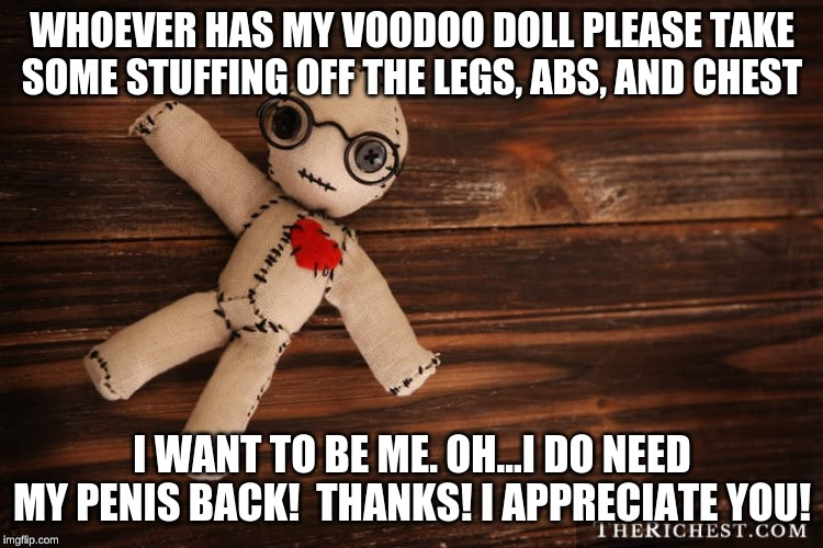 I just need some help.  Oh, and some friendly people to socialize would be awesome! | WHOEVER HAS MY VOODOO DOLL PLEASE TAKE SOME STUFFING OFF THE LEGS, ABS, AND CHEST I WANT TO BE ME. OH...I DO NEED MY P**IS BACK!  THANKS! I  | image tagged in voodoo doll,transgender,help,success | made w/ Imgflip meme maker