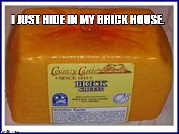 I JUST HIDE IN MY BRICK HOUSE. | made w/ Imgflip meme maker