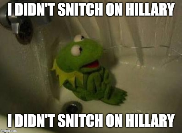 Kermit Shower | I DIDN'T SNITCH ON HILLARY I DIDN'T SNITCH ON HILLARY | image tagged in kermit shower | made w/ Imgflip meme maker