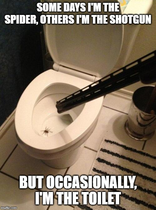 SOME DAYS I'M THE SPIDER, OTHERS I'M THE SHOTGUN BUT OCCASIONALLY, I'M THE TOILET | image tagged in spider,shotgun,shot,toilet,blow up,end badly | made w/ Imgflip meme maker