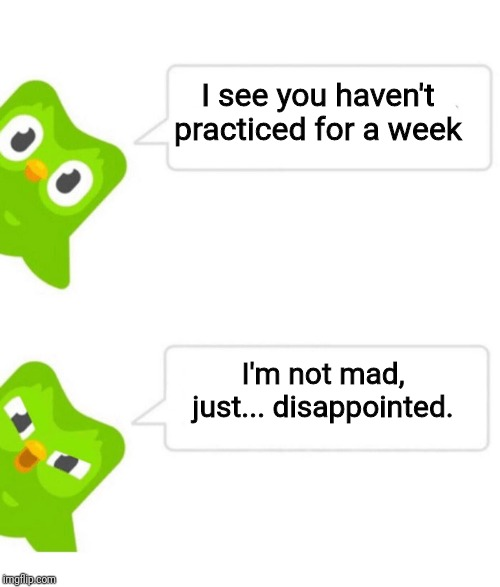 Duolingo 5 in a row | I see you haven't practiced for a week I'm not mad, just... disappointed. | image tagged in duolingo 5 in a row | made w/ Imgflip meme maker