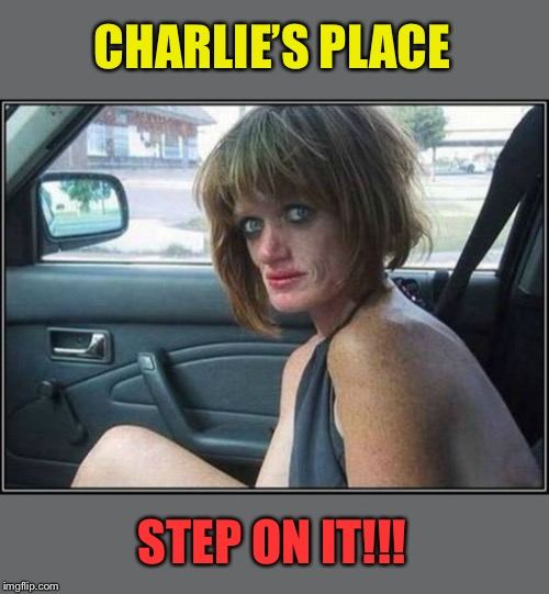 Ugly meth heroin addict Prostitute hoe in car | CHARLIE'S PLACE STEP ON IT!!! | image tagged in ugly meth heroin addict prostitute hoe in car | made w/ Imgflip meme maker