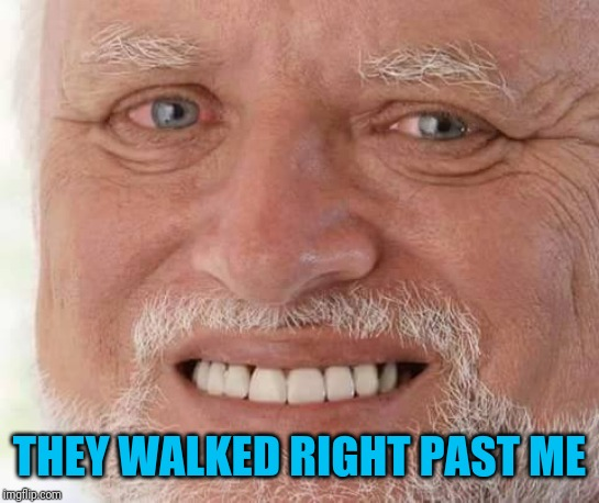 harold smiling | THEY WALKED RIGHT PAST ME | image tagged in harold smiling | made w/ Imgflip meme maker