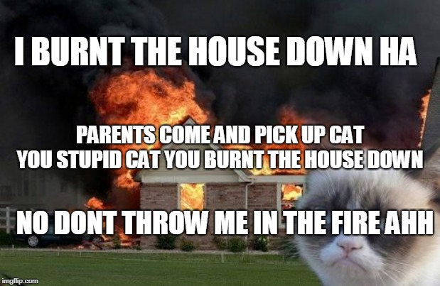 Burn Kitty | I BURNT THE HOUSE DOWN HA PARENTS COME AND PICK UP CAT YOU STUPID CAT YOU BURNT THE HOUSE DOWN NO DONT THROW ME IN THE FIRE AHH | image tagged in memes,burn kitty,grumpy cat | made w/ Imgflip meme maker