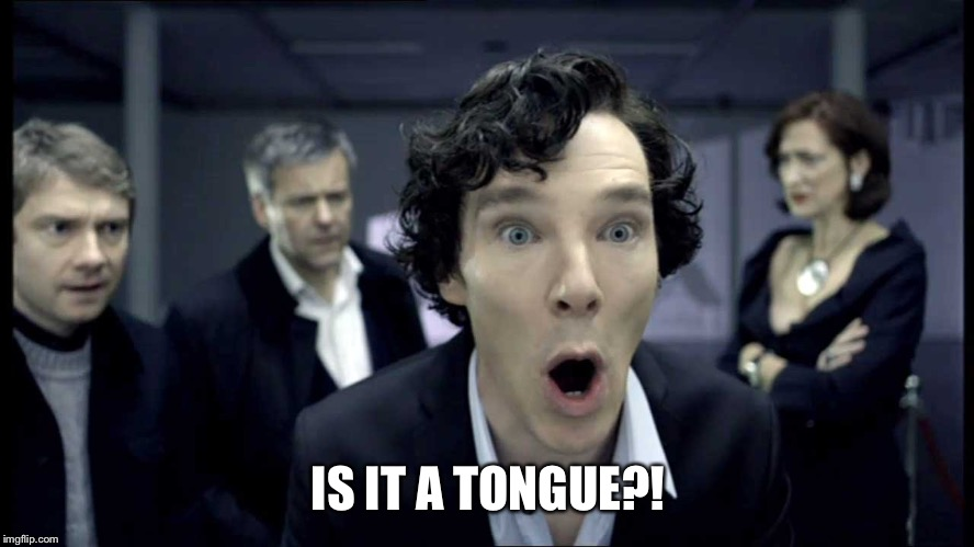 Sherlock's Gloryhole | IS IT A TONGUE?! | image tagged in sherlock's gloryhole | made w/ Imgflip meme maker