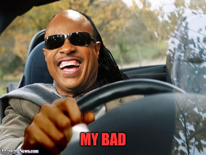 Stevie Wonder Driving | MY BAD | image tagged in stevie wonder driving | made w/ Imgflip meme maker