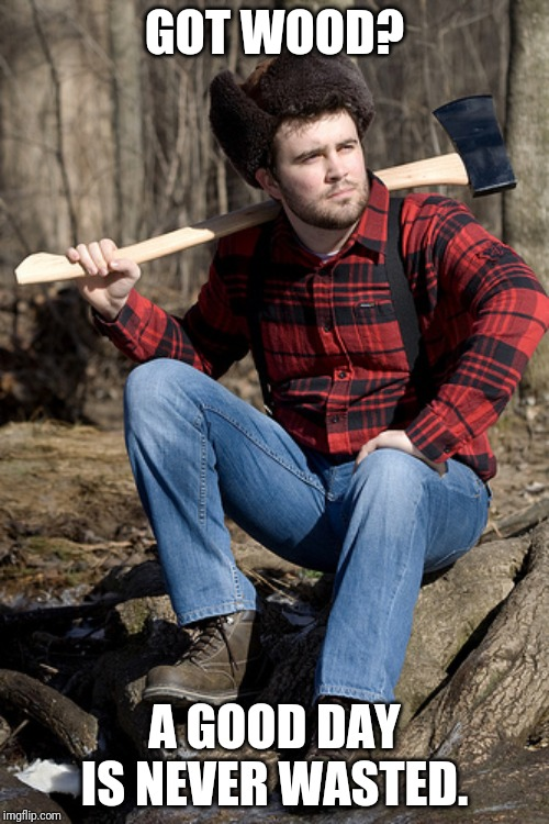Solemn Lumberjack | GOT WOOD? A GOOD DAY IS NEVER WASTED. | image tagged in memes,solemn lumberjack | made w/ Imgflip meme maker