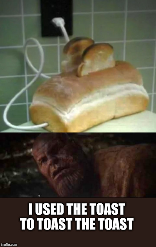 Toasting with Thanos |  I USED THE TOAST TO TOAST THE TOAST | image tagged in thanos,toast,toaster,funny meme | made w/ Imgflip meme maker