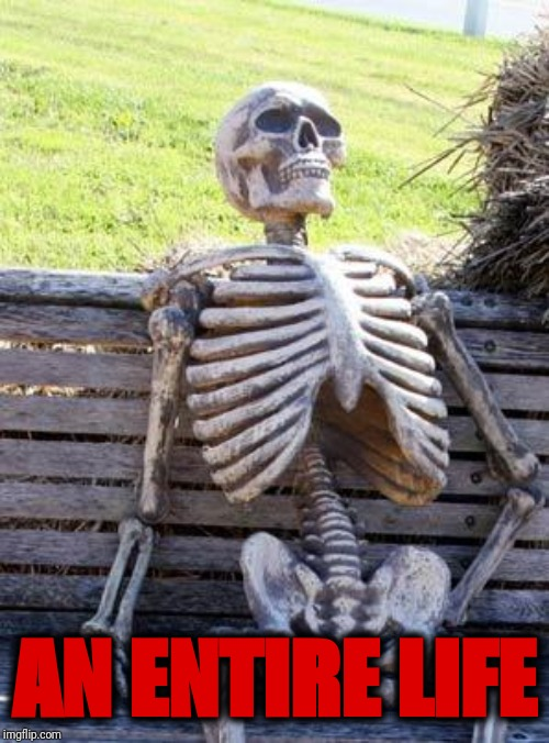 AN ENTIRE LIFE | image tagged in memes,waiting skeleton | made w/ Imgflip meme maker