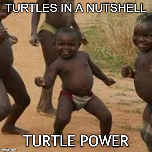 Third World Success Kid Meme | TURTLES IN A NUTSHELL TURTLE POWER | image tagged in memes,third world success kid | made w/ Imgflip meme maker