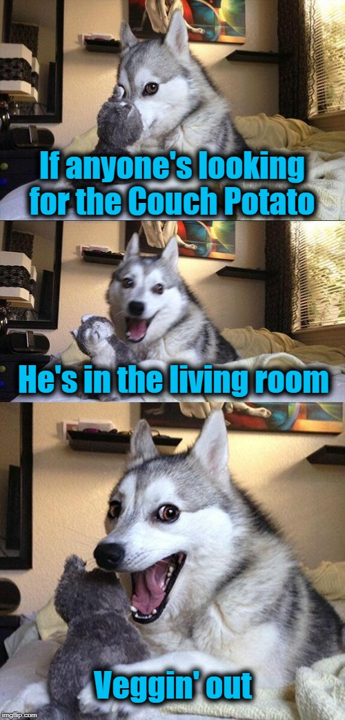 Bad Pun Dog |  If anyone's looking for the Couch Potato; He's in the living room; Veggin' out | image tagged in memes,bad pun dog | made w/ Imgflip meme maker