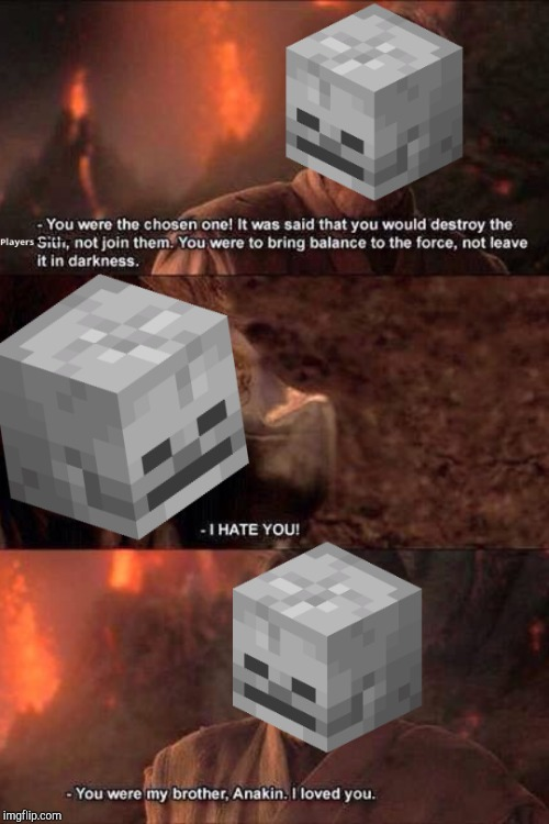 The Skeletons after shooting at each other | image tagged in minecraft,skeleton,memes,star wars,obiwan,anakin skywalker | made w/ Imgflip meme maker