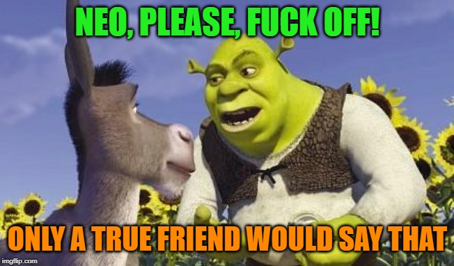 SHREK & ONIONS | NEO, PLEASE, F**K OFF! ONLY A TRUE FRIEND WOULD SAY THAT | image tagged in shrek  onions | made w/ Imgflip meme maker
