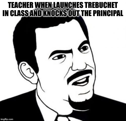 Seriously Face | TEACHER WHEN LAUNCHES TREBUCHET IN CLASS AND KNOCKS OUT THE PRINCIPAL | image tagged in memes,seriously face | made w/ Imgflip meme maker